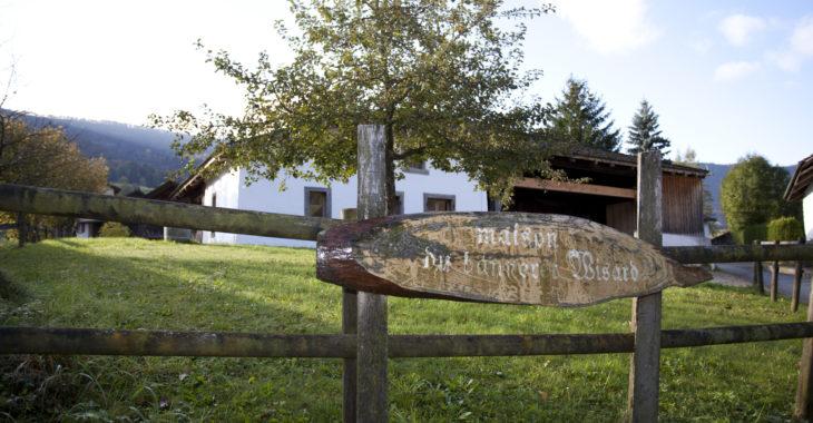 Banneret Wisard - Grandval