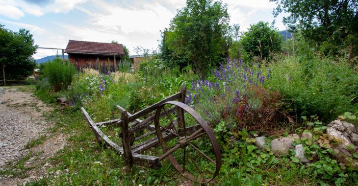 banneret-wisard-jardin
