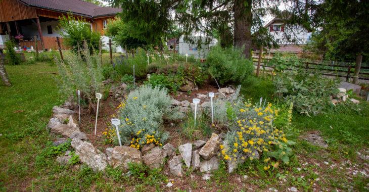 banneret-wisard-jardin-aromatique